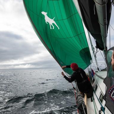 Blue Line Spinnaker Series sail aboard 'Barba'