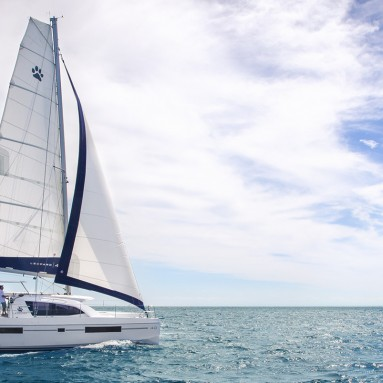 Leopard 40 Sailing and cruising with Ullman Sails