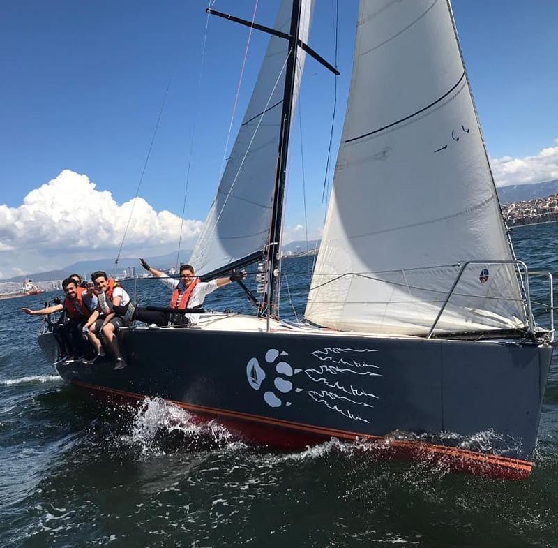 Bear-Sail