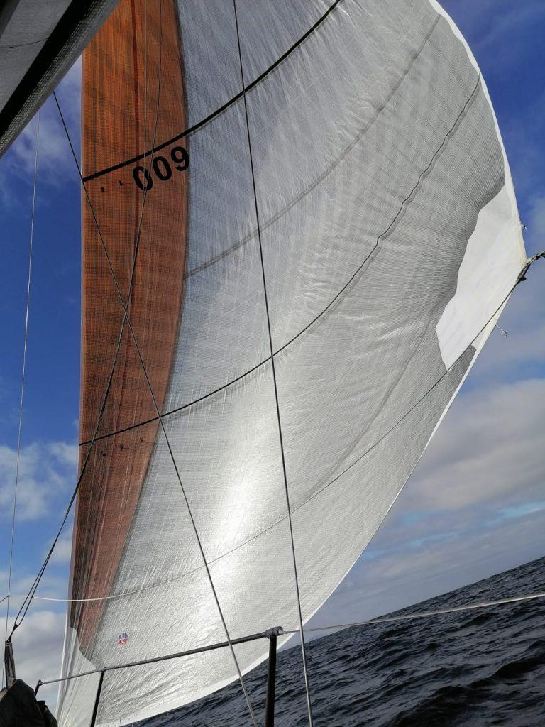 active-luff-sails